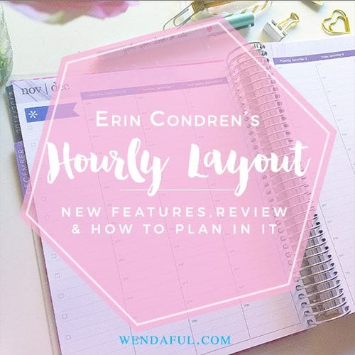 First Look: Erin Condren Hourly Layout Planner & How to Plan & Decorate It!