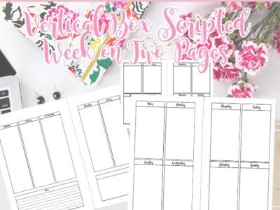Vertical Boxed Week On Two Pages Planner Inserts