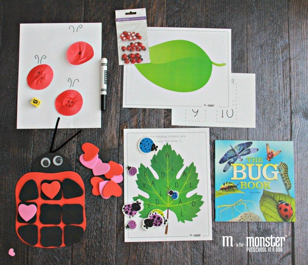 ladybug-with-book