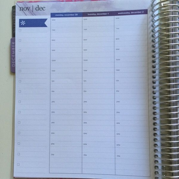 First Look Erin Condren Hourly Layout Planner Amp How To